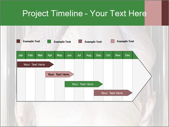0000079387 PowerPoint Templates - Slide 25