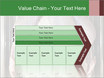 0000079387 PowerPoint Templates - Slide 27