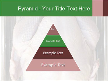 0000079387 PowerPoint Template - Slide 30
