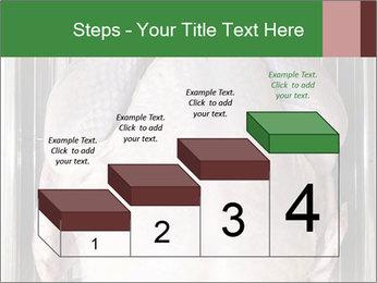 0000079387 PowerPoint Templates - Slide 64