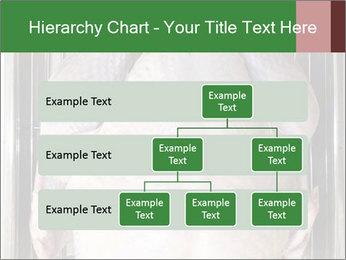 0000079387 PowerPoint Templates - Slide 67