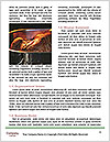 0000079387 Word Templates - Page 4