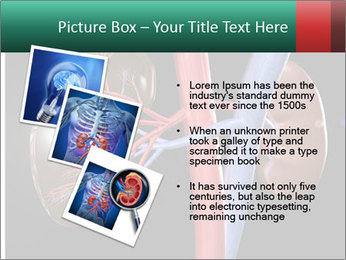 0000079393 PowerPoint Template - Slide 17