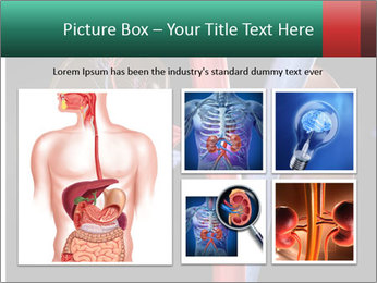 0000079393 PowerPoint Template - Slide 19