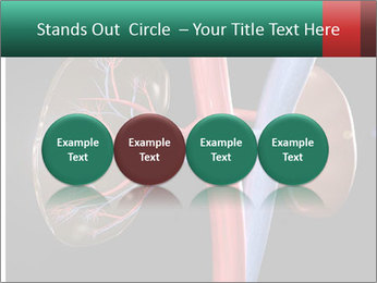 0000079393 PowerPoint Template - Slide 76
