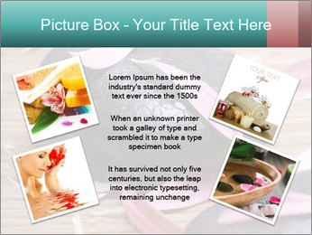 0000079395 PowerPoint Template - Slide 24