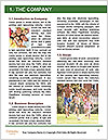 0000079397 Word Templates - Page 3