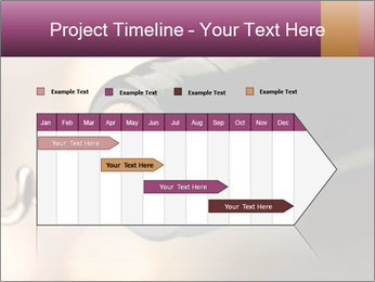 0000079401 PowerPoint Templates - Slide 25