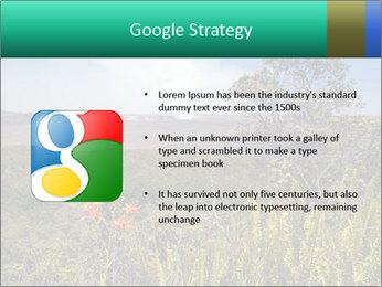 0000079405 PowerPoint Templates - Slide 10