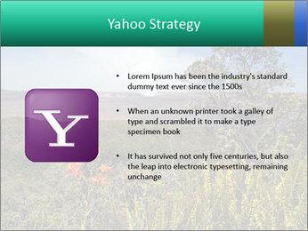 0000079405 PowerPoint Templates - Slide 11