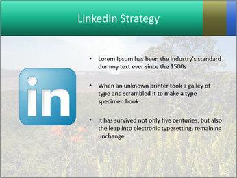 0000079405 PowerPoint Templates - Slide 12