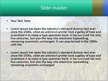 0000079405 PowerPoint Templates - Slide 2