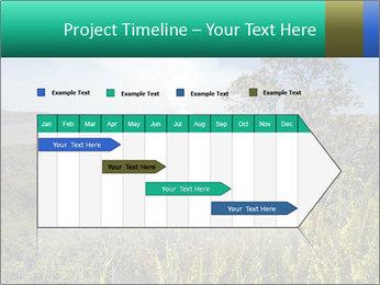 0000079405 PowerPoint Templates - Slide 25