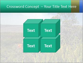 0000079405 PowerPoint Templates - Slide 39