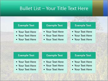 0000079405 PowerPoint Templates - Slide 56