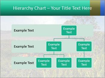 0000079405 PowerPoint Templates - Slide 67