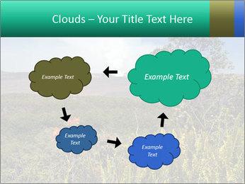 0000079405 PowerPoint Templates - Slide 72