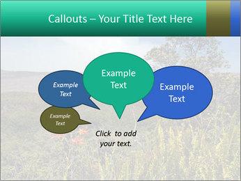 0000079405 PowerPoint Templates - Slide 73