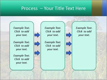 0000079405 PowerPoint Templates - Slide 86