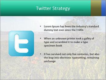 0000079405 PowerPoint Templates - Slide 9