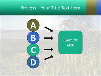 0000079405 PowerPoint Templates - Slide 94