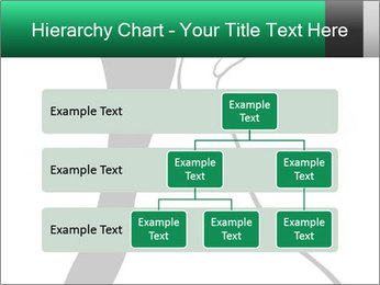0000079411 PowerPoint Templates - Slide 67