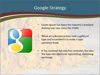 0000079416 PowerPoint Template - Slide 10