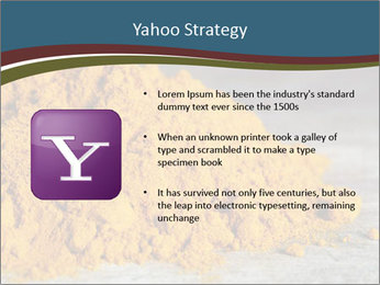 0000079416 PowerPoint Template - Slide 11