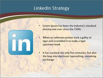 0000079416 PowerPoint Template - Slide 12
