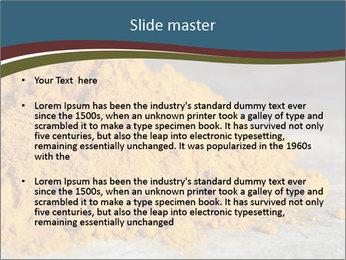 0000079416 PowerPoint Template - Slide 2