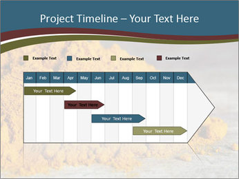 0000079416 PowerPoint Template - Slide 25