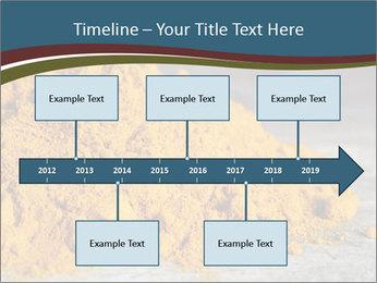 0000079416 PowerPoint Template - Slide 28