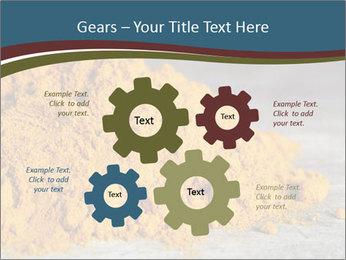 0000079416 PowerPoint Template - Slide 47