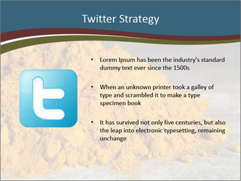 0000079416 PowerPoint Template - Slide 9
