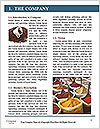 0000079416 Word Template - Page 3