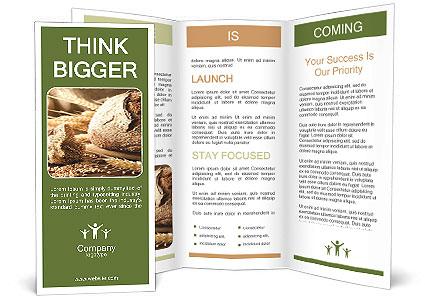 0000079418 Brochure Template
