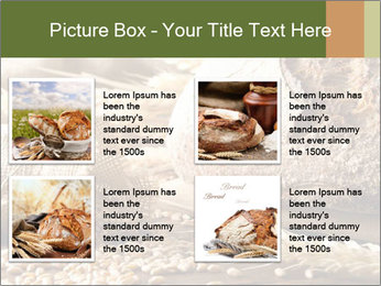 0000079418 PowerPoint Template - Slide 14