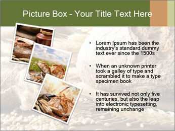 0000079418 PowerPoint Template - Slide 17