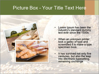 0000079418 PowerPoint Template - Slide 20