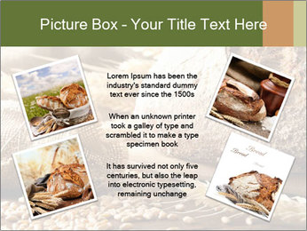 0000079418 PowerPoint Template - Slide 24