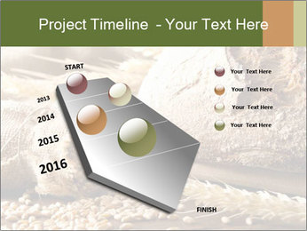 0000079418 PowerPoint Template - Slide 26