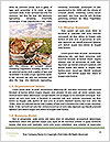 0000079418 Word Templates - Page 4