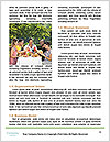 0000079419 Word Templates - Page 4