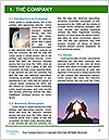 0000079420 Word Template - Page 3