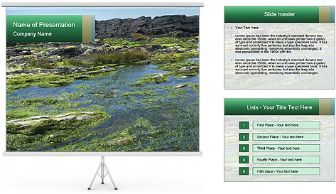 0000079428 PowerPoint Template