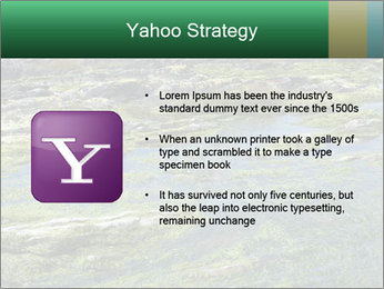 0000079428 PowerPoint Templates - Slide 11