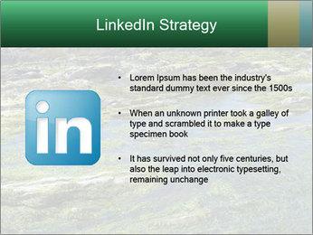 0000079428 PowerPoint Templates - Slide 12