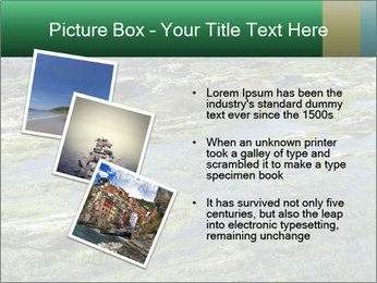 0000079428 PowerPoint Templates - Slide 17