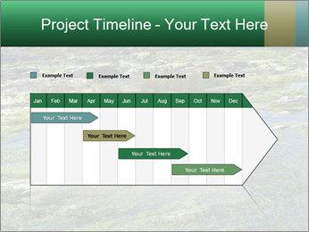 0000079428 PowerPoint Templates - Slide 25