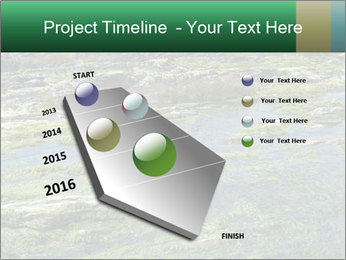 0000079428 PowerPoint Templates - Slide 26